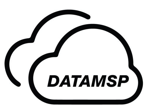DataMSP Enables Rapid On-Ramps to the Cloud with Megaport